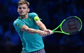 ATP Finals: Goffin defeats Federer faces Dimitrov in final