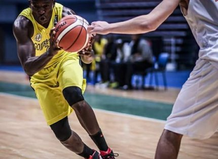 FIBA World Cup qualifiers: Home based players relish D'Tigers invite