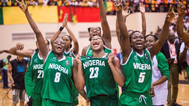 Image result for D'Tigress players