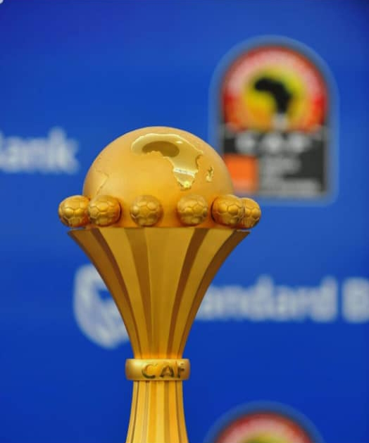 AFCON 2019: Egypt awarded hosting rights