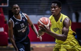 Basketball: Nwaiwu and Agu get D'Tigers invite